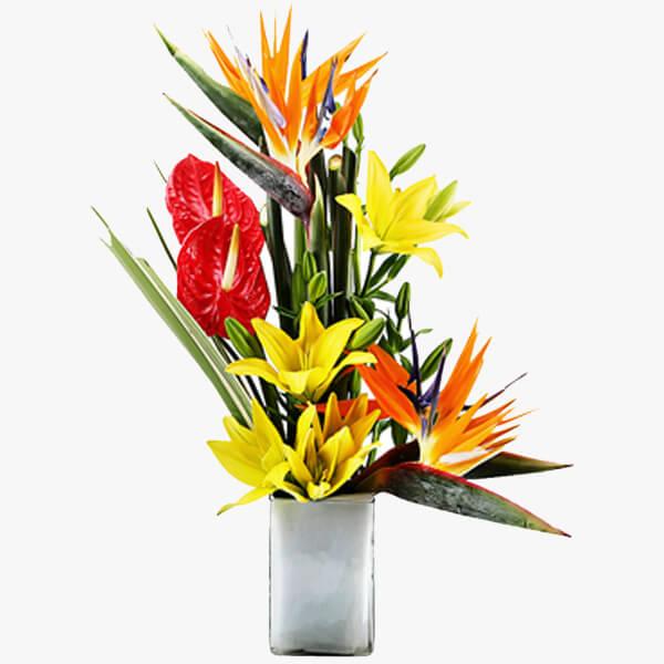 bb112637118 Exotic Mix – Kolkata Flower Shop