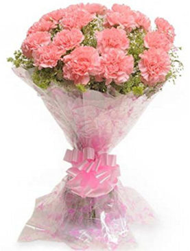 Cheerful Carnations